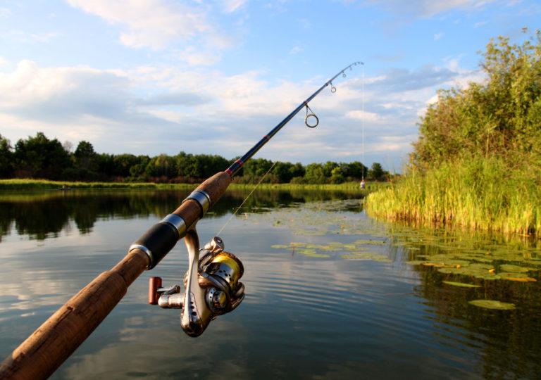 Aktiviteetit - Kalastusretket